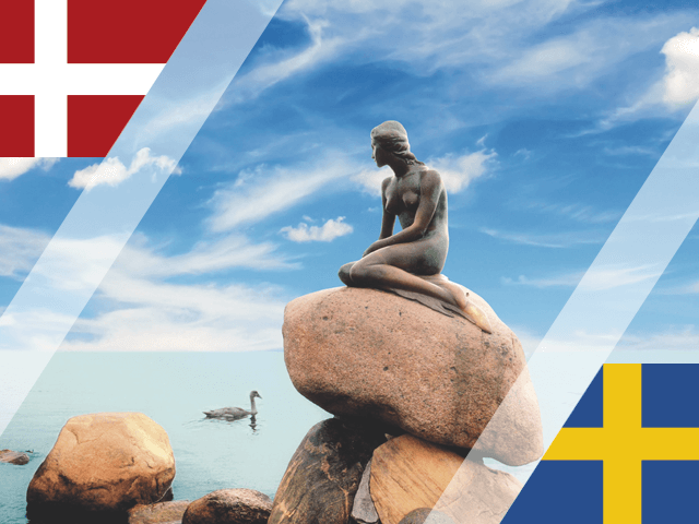 Higher education in Denmark and Sweden
